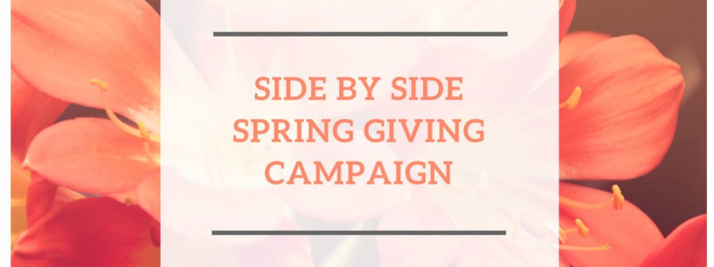 Spring Campaign - Webpage Header